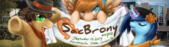 Sac Brony Expo Banner